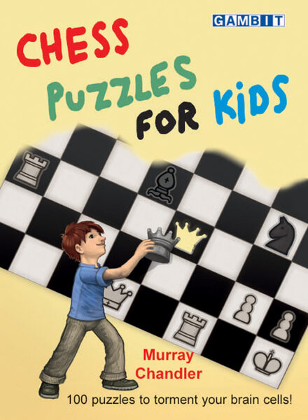 NZD $20 - Chess Puzzles For Kids - Chandler